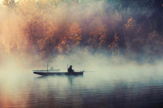 как фотографировать туман?
